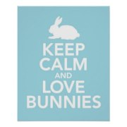 keep_calm_and_love_bunnies_print_or_poster_in_blue-rc429aaf3813046fbabe9d45a95d05320_wvc_8byvr_324